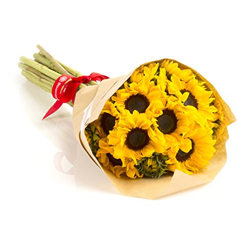 4th anniversary: Sunflowers Hand-tied Bouquet