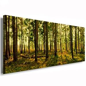 landschaften panorama wasserfall wald b ume natur foto bild auf leinwand n 00724 moderne. Black Bedroom Furniture Sets. Home Design Ideas