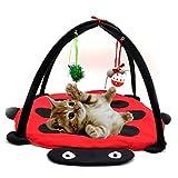 Juguetes para Gato - Badalink Gato Divertido Actividad de Juego de juguete Tienda de campa�a Carpa Cama (Red/Black)