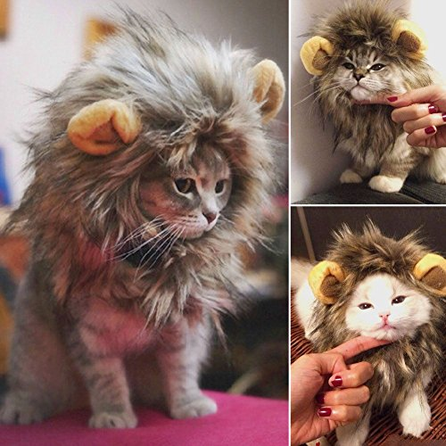 [Furry Pet Hat Lion Mane Wig for Cat Christmas Xmas Santa Halloween Clothes Fancy Dress Up With Ears] (Doc Mcstuffins Hippo Costume)