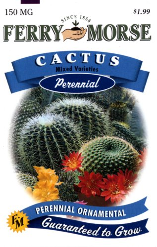 Ferry-Morse Perennial Flower Seeds 1022 Cactus - Mixed Varieties 150 Milligram Packet