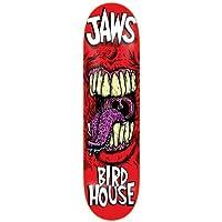 Birdhouse Aaron