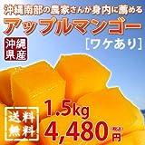 沖縄南部の農家さんが身内に薦めるアップルマンゴー(訳あり) 1.5kg ランキングお取り寄せ