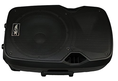 "Epic USA Pro Audio SYSTEM12 Dual 12"" Powered Speakers with ..."