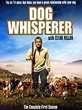 echange, troc The Dog Whisperer - Season 1 [Import anglais]