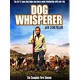 The Dog Whisperer - Season 1 [UK Import]