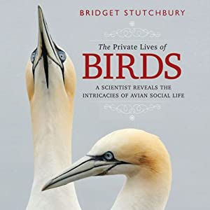 The Private Lives of Birds: A Scientist Reveals the Intricacies of Avian Social Life | [Bridget Stutchbury]