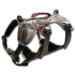 Ruffwear DoubleBack Harness, Graphite Gray by Ruffwear, Inc.
