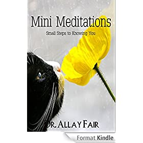 Mini Meditations: Every day meditational mood-stabilizers at home, work and sleep. (Easing your mind calm Book 1) (English Edition)