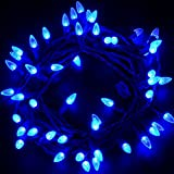 MAXINDA LED String Lights Outdoor - Diamond Strawberry 18 feet 50 LEDs UL Listed Fairy Lights for Patio Garden Christmas Holiday Decorating Blue