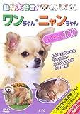 動物大好き!ワンちゃん・ニャンちゃんスペシャル100 [DVD]