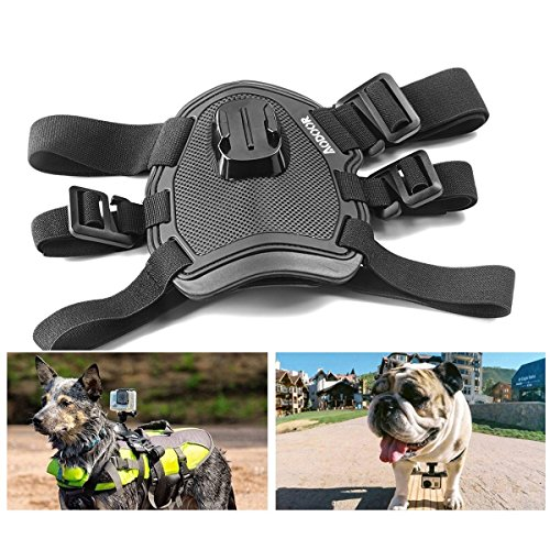 how to put body belt for dogs