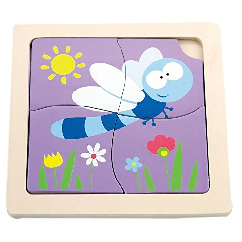 Dragon Fly 1st Puzzles