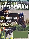 Practical-Horseman