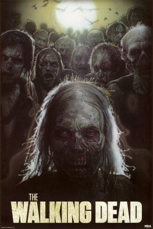 The Walking Dead Struzan Zombies TV Poster Print