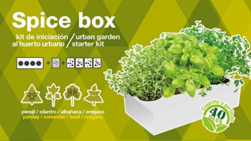 seed-box-sbarom-especiera-de-hierbas-aromaticas-oregano-perejil-albahaca-y-cilantro