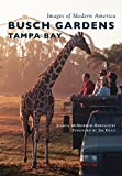 Busch Gardens Tampa Bay (Images of Modern America)