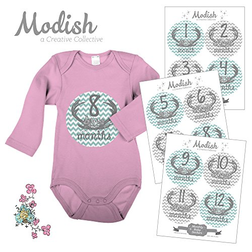 12 Monthly Baby Stickers, Deer Antlers & Flowers, Girl, Baby Belly Stickers, Monthly Onesie Stickers, First Year Stickers Months 1-12, Teal, Grey, Gray, Chevron, Deer Antlers, Baby Girl