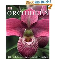 Orchideen: Die schönsten Arten und Hybriden