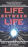 Life Between Life