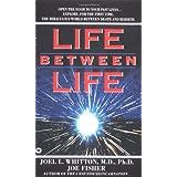 Life Between Life ~ Joe Fisher