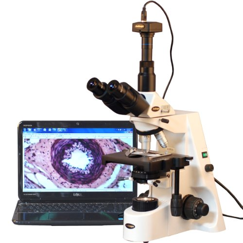 AmScope-T690C-PL-10M-Digital-Trinocular-Compound-Microscope-40X-2500X-Magnification-WH10x-and-WH25x-Super-Widefield-Eyepieces-Infinity-Plan-Achromatic-Objectives-Brightfield-Kohler-Condenser-Double-La