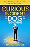 img - for The Curious Incident of the Dog in the Night-Time: (Broadway Tie-in Edition) (Vintage Contemporaries) book / textbook / text book