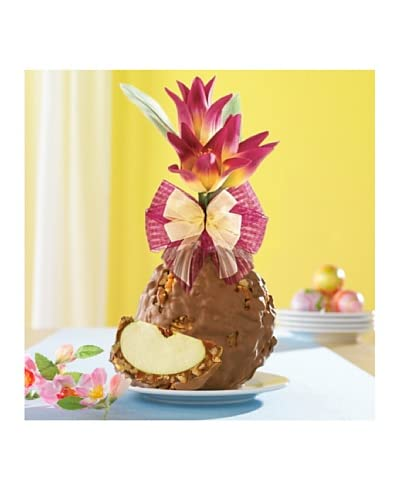 Mrs. Prindable's Sweet Tulips Milk Chocolate Walnut Pecan Jumbo Apple