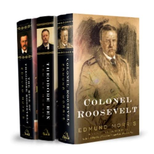 review the rise of theodore roosevelt