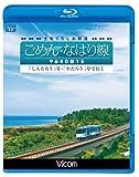 土佐くろしお鉄道 ごめん・なはり線 9640形1S しんたろう号・やたろう号で行く(Blu-ray Disc)