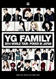 YG FAMILY WORLD TOUR 2014 -POWER- in Japan (DVD3枚組)