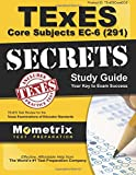 texes 291 Early Childhood - 6 Grade Core Subjects