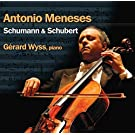 Schubert & Schumann - Works for Cello and Piano