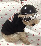 Pets Ridding Caps Cosplay Hat ABS Plastic Doggie Puppy Bike Motorcycle Helmets Sports Dog Costumes Accessories (S) by Unknown