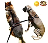 Pet Supplies for Dog Leashes - Dogs Double Clip Leash - 8ft Dual Dog Training Leash 2 x Dogs 1 x Leash