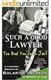 Such a Good Lawyer: Too Bad You're in Jail: A young lawyer's life, learning, and loves, Volume 2