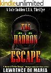 THE HADRON ESCAPE (COLE SUDDEN CIA TH...