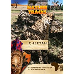 Nature Tracks Cheetah