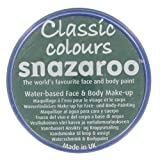 Snazaroo Professional Classic Colours Face Paints 18ml (Grass Green)
