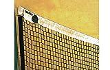 El Leon De Oro - red badminton entrenamiento