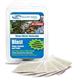 Healthy Ponds 60008 Blast Pond Water Cleaner, 5 Water Soluble Packets; Each Packet Treats Up To 2,500 Gallons