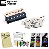 Alnico II Pro Slash APH-2 Neck Pickups (11104-06-Z) with Planet Waves/GoDpsMusic 3Pick Sampler, Planet Waves Polish Pak & GoDpsMusic Polish Cloth