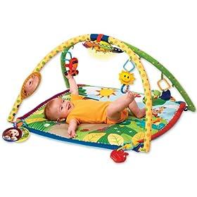 Baby Einstein Activity Gym