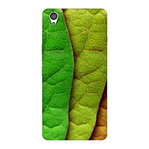 Impressive Leaf Pattern Multicolor Back Case Cover for OnePlus X