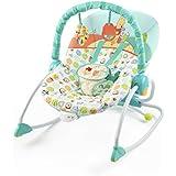 Amazon Com Disney Baby Winnie The Pooh Bouncer With