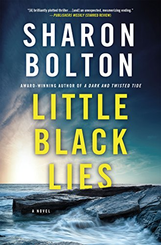 Little Black Lies: A Novel