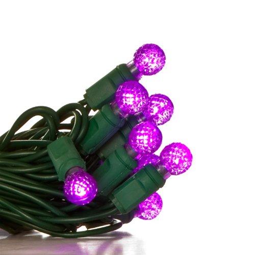50-Raspberry-G12-Purple-LED-Christmas-Light-Set-Green-Wire