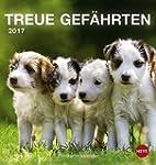 Hunde Postkartenkalender - Kalender 2017