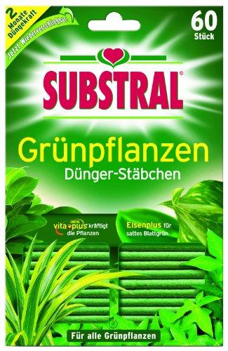 substral-batons-dengrais-pour-plantes-vertes-pack-de-60