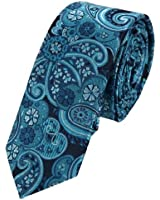 EAE1B12 Mens Goods Silk Skinny Tie Multicolored Pattern Gift for Him By Epoint